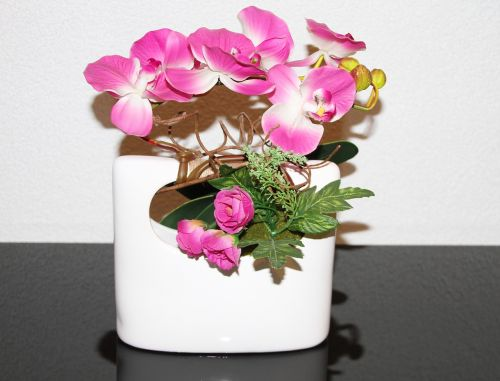 vase orchid pink