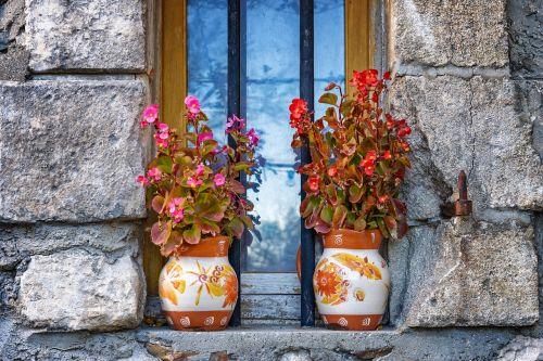 vase flowers still life