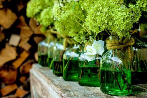 vases decoration plant