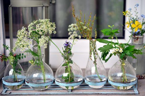 vases glass glass vases