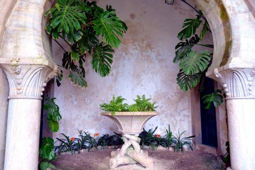 vault plant stone table