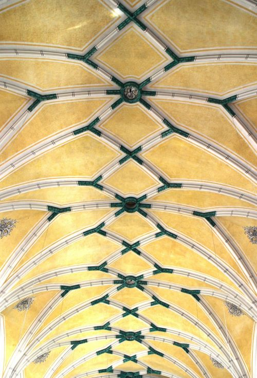 vaulted ceilings blanket vault