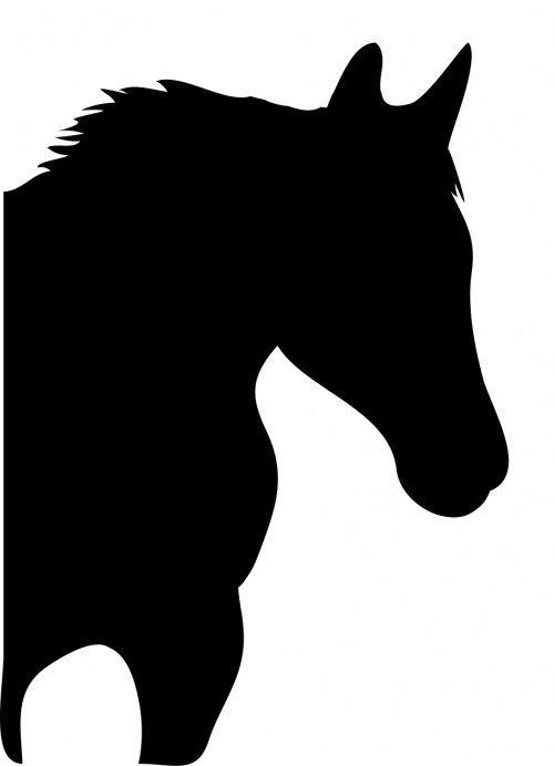 vector horse silhouette