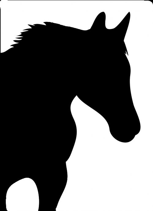 vektorius,arklys,siluetas,logotipų piktogramos,gyvūnų vektorius,gyvūnas,dizainas,logotipas,nemokama vektorinė grafika