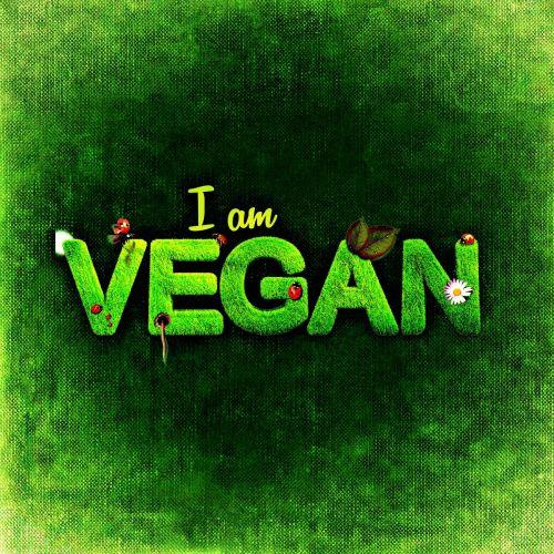 vegan healthy attitude nutrition