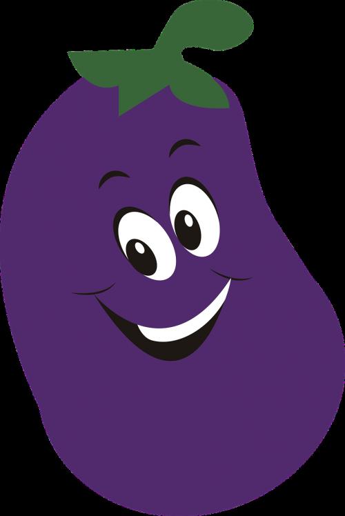 vegetable food eggplant