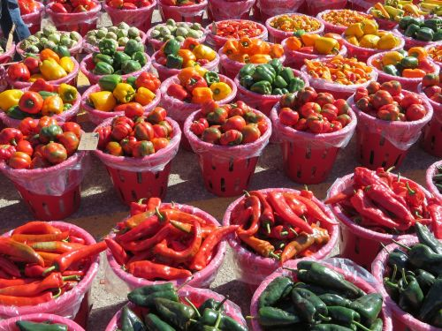 vegetable tomato paprika