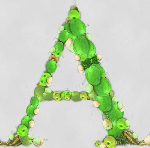 Vegetable Letter A