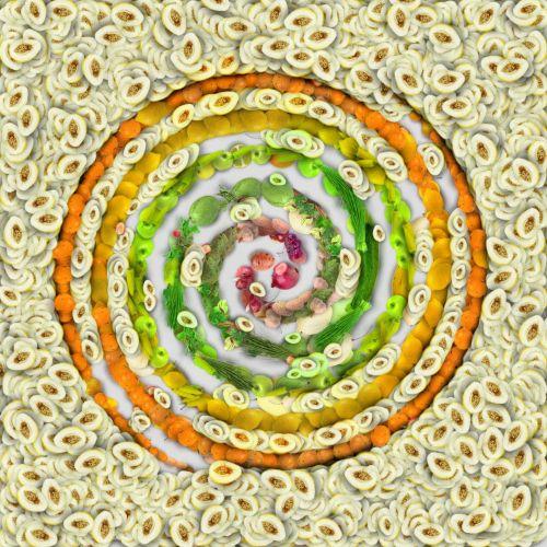 Vegetable Spiral