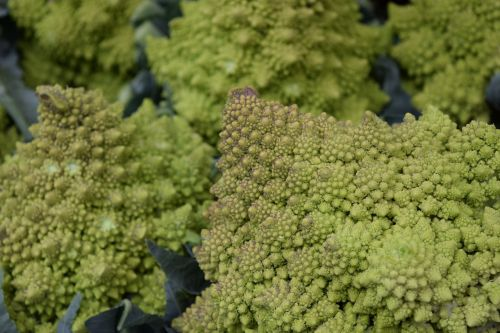 vegetables veggies cauliflower
