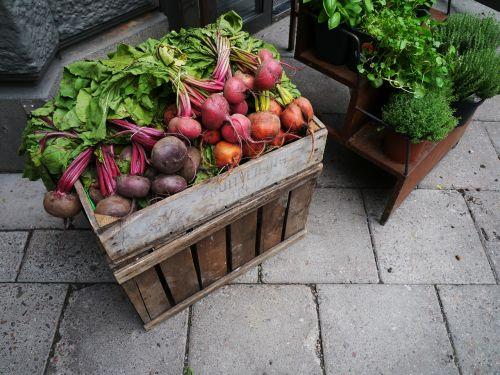 vegetables radishes food
