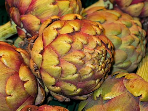vegetables artichoke healthy