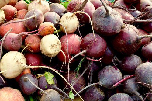 vegetables farmer's market beets