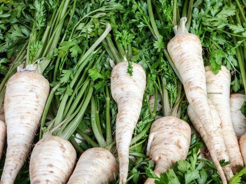 vegetables turnip market