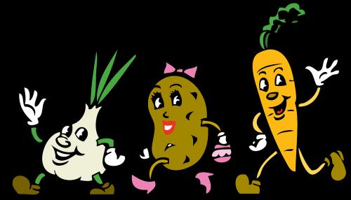 vegetables cartoon root vegetables