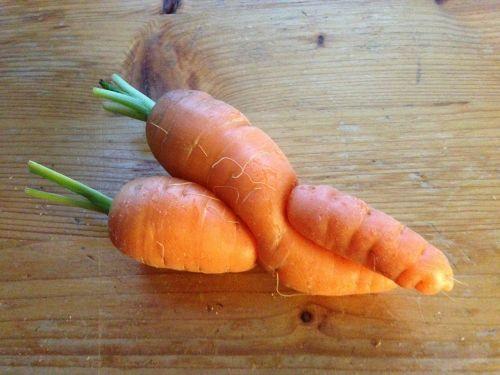 vegetables root entanglement