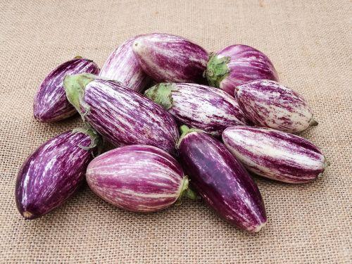 vegetables eggplant mediterranean