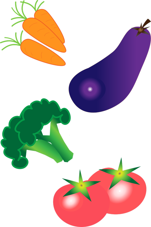 vegetables  eggplant  carrot
