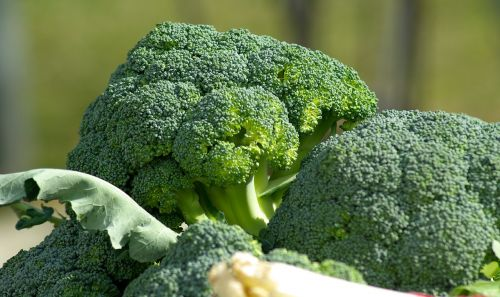 vegetables broccoli cabbage