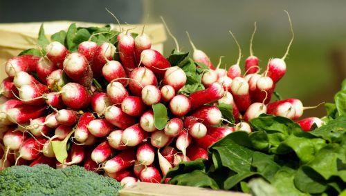 vegetables radish vitamins