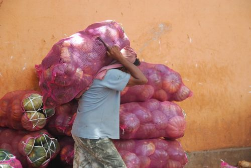 vegetables bag sac