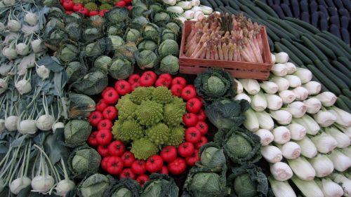 vegetables fennel asparagus