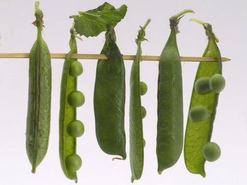 vegetables peas macro