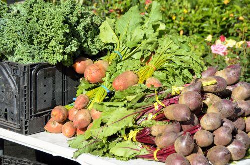 raktažodžiai & nbsp, rinka, ūkis, parduotuvė, pardavimas, pirkti, Žemdirbystė, žalias, mityba, sezoninis, oranžinė, salotos, skvošas, sezonas, grupė, bakalėja, žolė, fonas, mityba, sveikata, derlius, maistas, mažmeninė prekyba, žaliavinis, pagaminti, natūralus, parduoti, mažmeninė, ekologiškas, sveikas, augalas, daržovės pardavimui