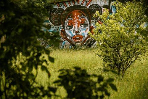 vegetation  paintings  nairobi