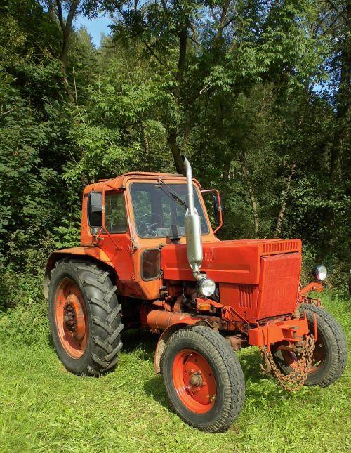 vehicle tractor belarus