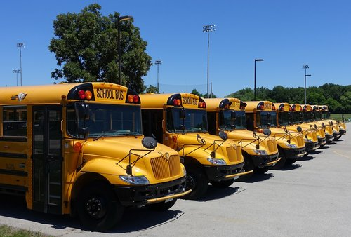 vehicle  schoolbus  yellow