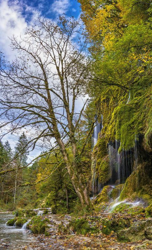 veil cases waterfall autumn