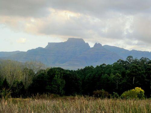 Veld And Mountains, Drakensberg