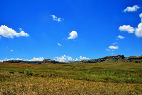 Veld And Sky