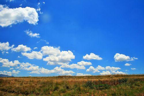Veld Under The Sky