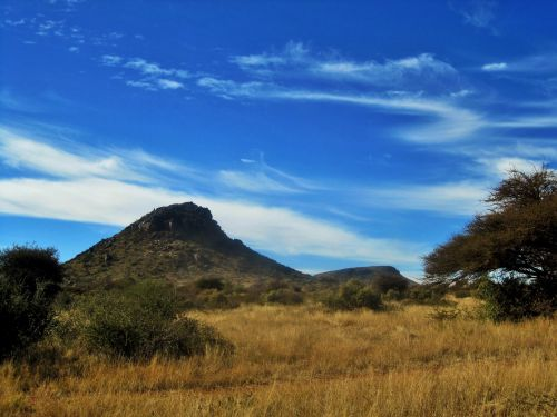 Veld With Hill In Northern Cape