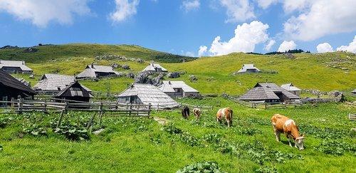 velika planina  slovenia  travel