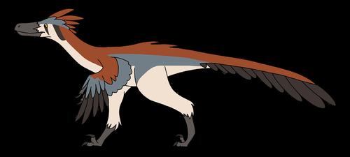 velociraptor  dinosaur  feathers