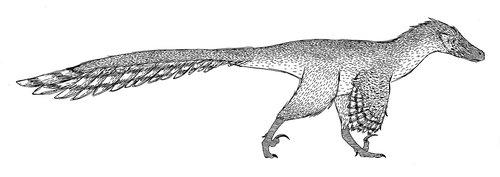 velociraptor  dromeaosaur  dinosaur