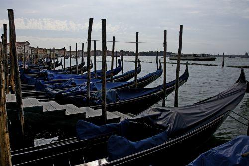 venezia venice summer