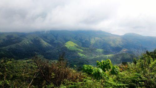 Verdant Hills 2