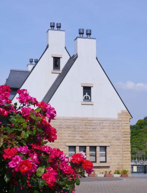 verny memorial france rose