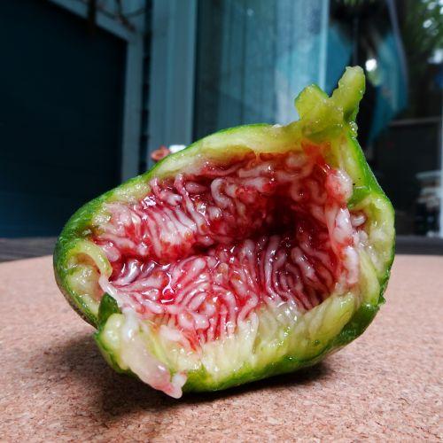 Very Ripe Fig