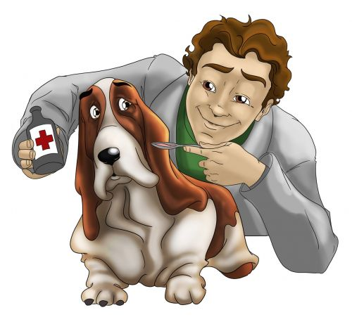 veterinary dog care