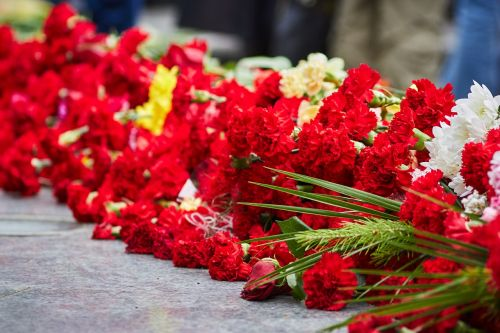 victory day flowers memory