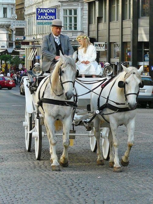 vienna coach carriage ride
