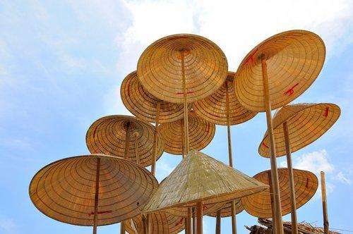 vietnam conical hat  sky  summer