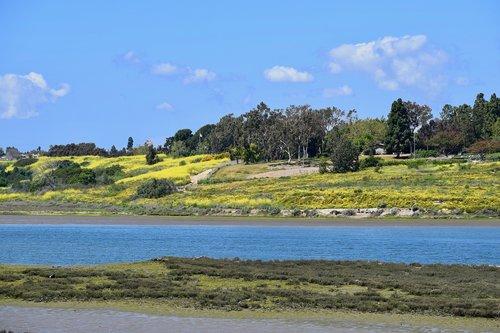 view  landscape  nature