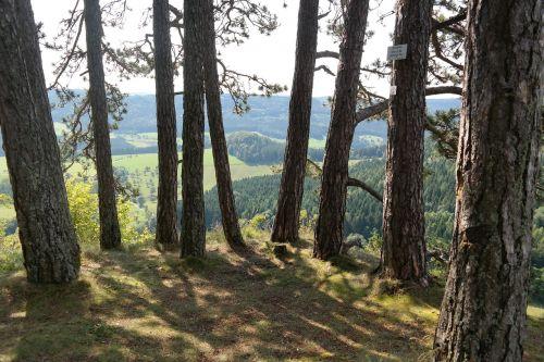 viewpoint wenzel stone swabian alb