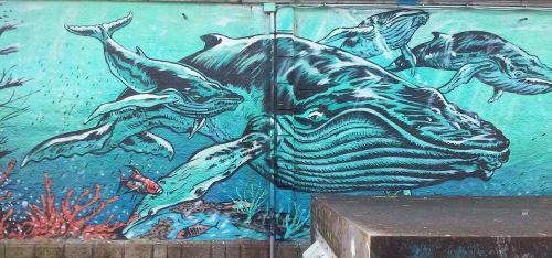 vigo castro streetart